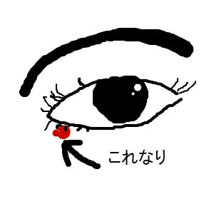 Cocolog_oekaki_2013_05_30_00_02